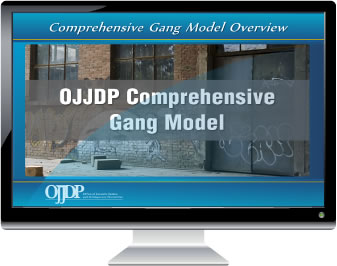 Computer monitor showing the OJJDP Comprehensive Gang Model Online Overview