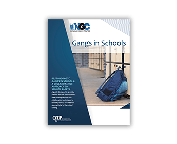 Recognizing Gang Activity in Schools Webinar
