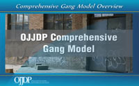 Thumbnail of the OJJPD Comprehensive Gang Model Online Overview