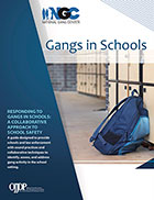 "Cover page of the ""Gangs in Schools"" PDF"