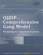 "Cover page thumbnail of ""Planning for Implementation"""